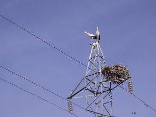 Линейная арматура воздушных линий электропередачи