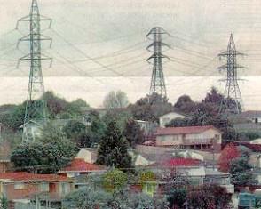 Как влияют электромагнитные поля линий электропередачи на людей, животных и растения