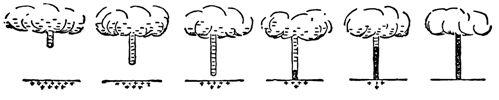Постепенное развитие лидера молнии (первые три рисунка) и её главной части (последние три рисунка)