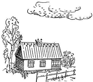 Распределение электричества в грозовой туче и наземных предметах