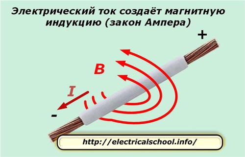 Электрический ток создает магнитную индукцию