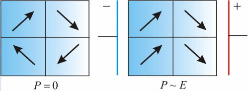 сегнетоэлектрики разбиты внутри на домены