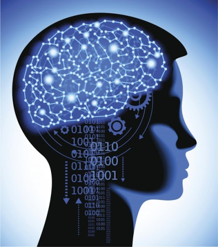 Биологическая кибернетика