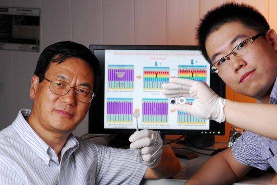 Трибоэлектрические наногенераторы