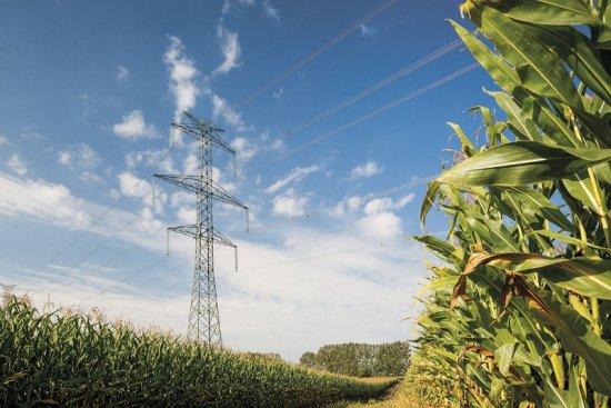 Виды и типы опор воздушных линий электропередачи